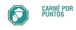 Carnet por puntos
